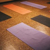 Retreat: All Levels Vinyasa<br>w/ aUM Yoga